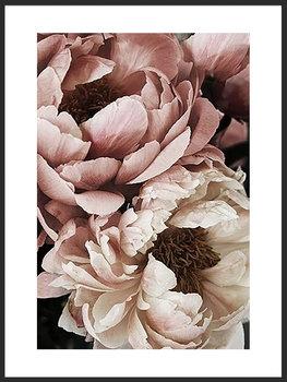 Nowoczesny plakat FABRYKA PLAKATU Piwonie B2, 50x70 cm-Fabryka plakatu