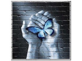 Obraz Motyl na dłoniach, 50x50 cm-Oobrazy