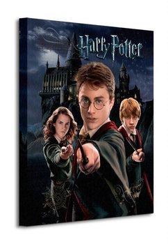 Obraz na płótnie ART GROUP Harry Potter (Harry Ron Hermione), 40x50 cm-Art Group