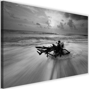 Obraz na płótnie Canvas FEEBY, Gałąź na brzegu morza, 120x80 cm-Caro