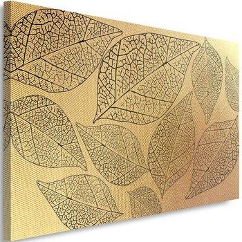 Obraz na płótnie Canvas FEEBY, Liście roślinne, 60x40 cm-Caro