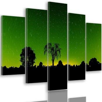 Obraz na płótnie Canvas FEEBY, pentaptyk typ A, Światła gwiazd 4, 100x70 cm-Caro