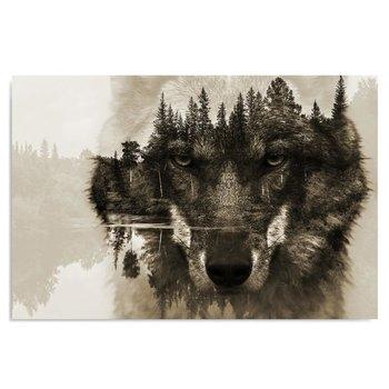 Obraz na płótnie, Wilk na tle lasu - brązowy, 120x80 cm-Caro