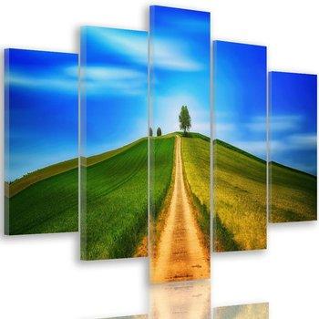 Obraz pięcioczęściowy na płótnie Canvas FEEBY, pentaptyk typ A, Droga na wzgórze, 100x70 cm-Caro