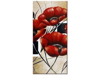 Obraz Polne maki, 55x115 cm-Oobrazy