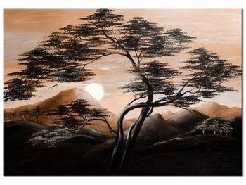 Obraz, Spokojna noc, 100x70 cm-Oobrazy