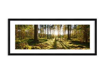 Obraz w ramie ARTTOR …Za siedmioma lasami - las zieleń drzewa, F1BAB120x50-3724, 120x50 cm-ARTTOR