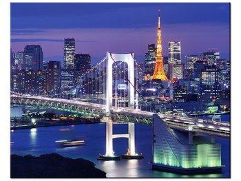 Obraz, Zatoka Tokijska, 50x40 cm-Oobrazy