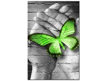 Obraz Zielony motyl w dłoniach, 20x30 cm-Oobrazy