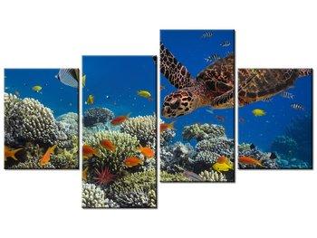 Obraz Żółw pod wodą, 4 elementy, 120x70 cm-Oobrazy