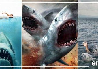 Od Rekinado po Meg, czyli kinowe oblicza rekinów