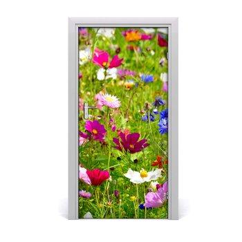 Okleina naklejka fototapeta na drzwi Polne kwiaty, Tulup-Tulup
