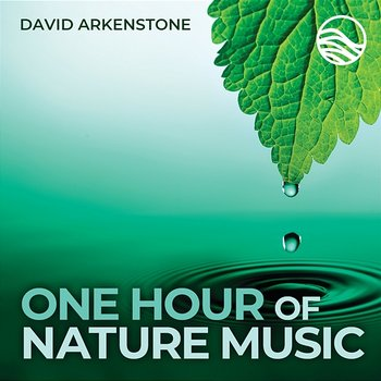One Hour Of Nature Music: For Massage, Yoga And Relaxation - David Arkenstone