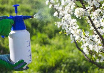 Opryskiwacze ogrodowe – jaki opryskiwacz do ogrodu wybrać?