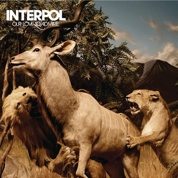 Image result for interpol our love to admire