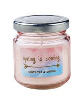 Paperdot Pastels, Świeczka zapachowa w słoiku, White Tea&Ginger