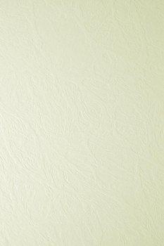 Papier ozdobny, fakturowany, Elfenbens, Skóra ecru, A4, 20 arkuszy
