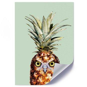 Plakat FEEBY Abstrakcja owoc i ptak, 40x60 cm-Feeby