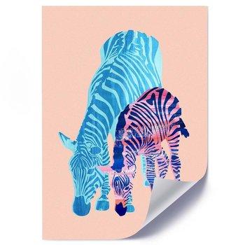 Plakat FEEBY Dwie zebry 2, 50x70 cm-Feeby