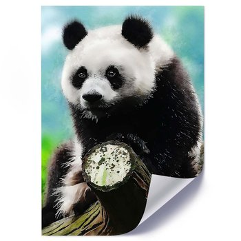 Plakat FEEBY Panda na drzewie, 70x100 cm-Feeby