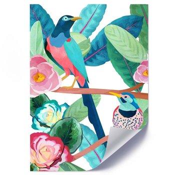 Plakat FEEBY Rajskie ptaki, 50x70 cm-Feeby