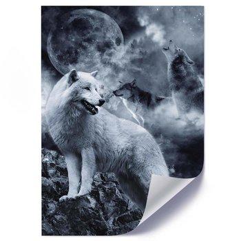 Plakat FEEBY Wilki i księżyc, 70x100 cm-Feeby