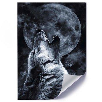 Plakat FEEBY Wyjący wilk i księżyc, 50x70 cm-Feeby