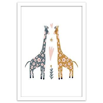 Plakat w ramie białej, Kolorowe żyrafy, 70x100 cm-Feeby