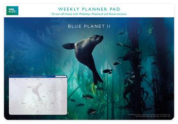Planer tygodniowy, Galapagos Sea Lion, niebieski