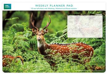 Planer tygodniowy, jeleń, zielono-brązowy