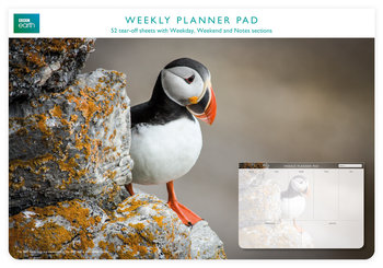 Planer tygodniowy, Puffin