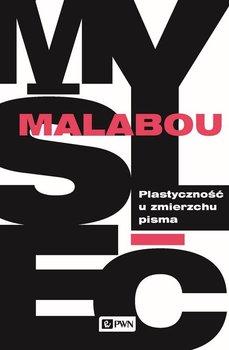Plastyczność u zmierzchu pisma-Malabou Catherine