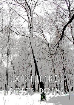 Poezje / Poems-Poe Edgar Allan