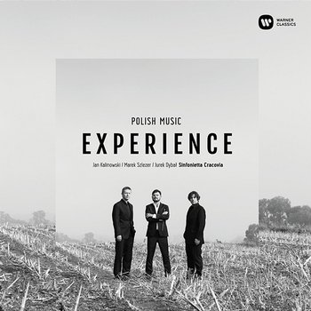 Polish Music Experience - Various Artists