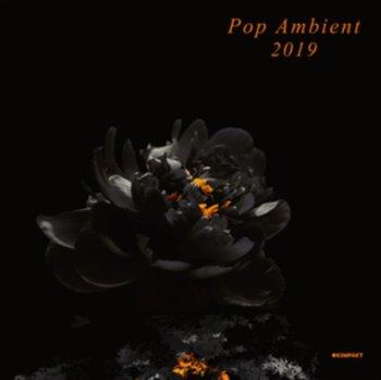 Pop Ambient 2019-Various Artists