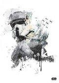 Posterplate, plakat Scarif Trooper - Rouge One Jammed Transmission