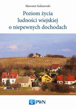 Poziom życia ludności wiejskiej o niepewnych dochodach                      (ebook)