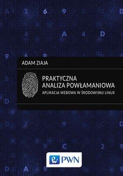 Praktyczna analiza powłamaniowa. Aplikacja webowa w środowisku Linux-Ziaja Adam