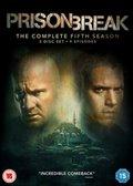 Prison Break: The Complete Fifth Season (brak polskiej wersji językowej)