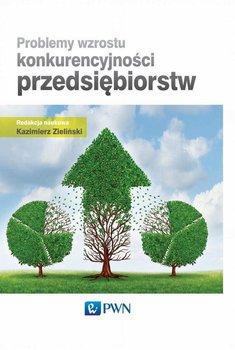 Problemy wzrostu konkurencyjności przedsiębiorstw                      (ebook)