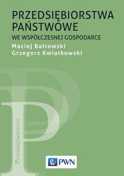Przedsiębiorstwa państwowe we współczesnej gospodarce-Bałtowski Maciej, Kwiatkowski Grzegorz