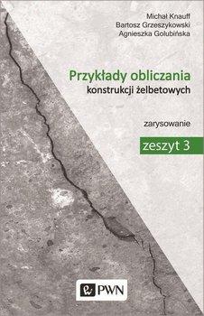 Przykłady obliczania konstrukcji żelbetowych. Zeszyt 3. Zarysowanie-Knauff Michał, Golubińska Agnieszka, Grzeszykowski Bartosz
