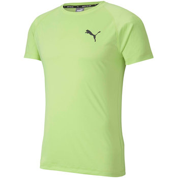 Puma, Koszulka męska, Rtg Tee Sharp zielona 581504 34, rozmiar XL-Puma