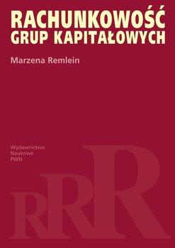 Rachunkowość grup kapitałowych                      (ebook)