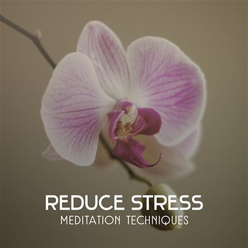 Reduce Stress – Meditation Techniques, Healing Music to Improve Your Mood, Clear Relaxation Sounds-Deep Meditation Music System