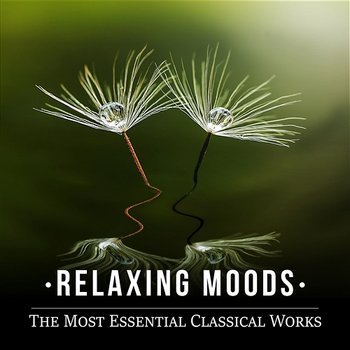 Relaxing Moods: The Most Essential Classical Works, Chamber Music, Piano & Harp Pieces - Erazm Jahnke, Lucecita Medrano