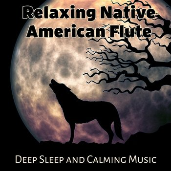 Relaxing Native American Flute: Deep Sleep and Calming Music for Meditation, Stress Relief, Chakra Healing, Indiana Dreams-Just Relax Music Universe