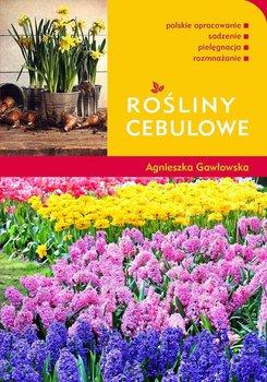 Rośliny cebulowe                      (ebook)