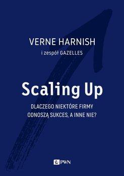 Scaling Up. Dlaczego niektóre firmy odnoszą sukces, a inne nie?-Harnish Verne