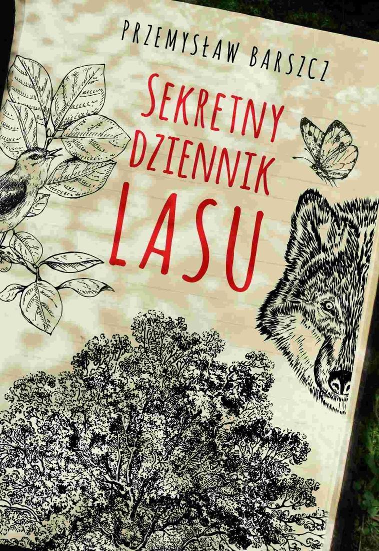 sekretny dziennik lasu b iext53113596 - SEKRETNY DZIENNIK LASU – PRZEMYSŁAW BARSZCZ: Odkryj tajemnice lasu